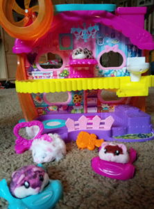 hamsters in a house