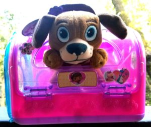 Doc McStuffins pet carrier